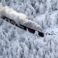 Train going through snowy trees in Germany!
